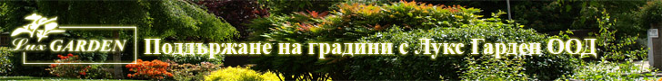 Абонаментна поддръжка на градини и дворове
