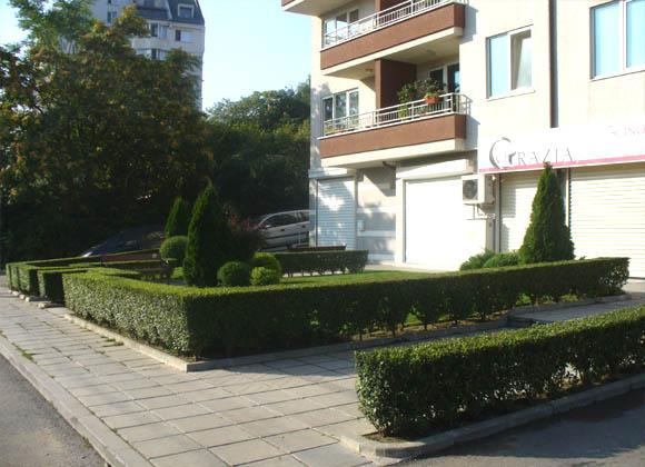 Стандартна поддръжка на частна зелена площ