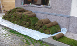 Тревен чим готов за полагане