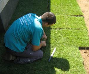Затревяване с тревни чимове