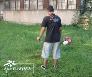 Косене и поддръжка на градина трева и райграс