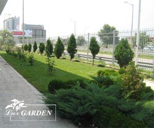 Озеленяване на предофисна зелена площ