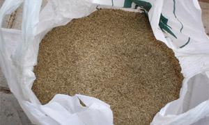 Професионална немска тревна смеска